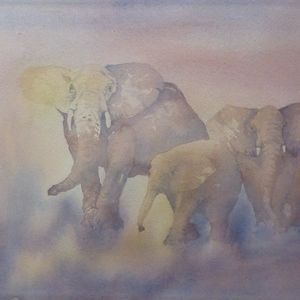 African elephant series - 1
