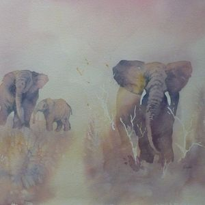 African elephant series - 2