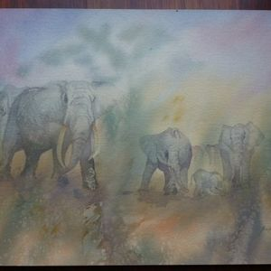 African elephant series - 3